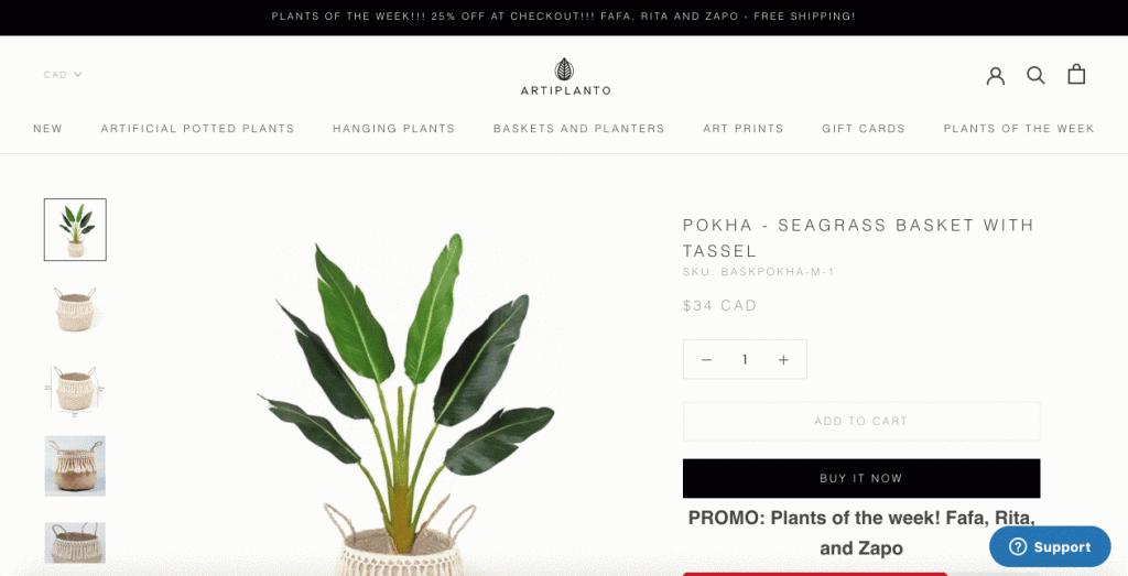 shopify-store-artplanto-website-pokha-product